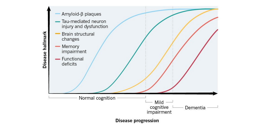 Beta Amyloid Plaques >> Hallmarks of Alzheimer's disease: amyloid-beta and tau   Spikes and bursts